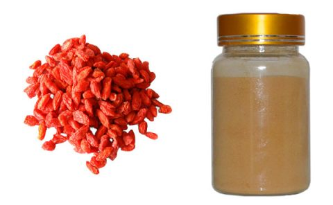 chinese-wolfberry-extract