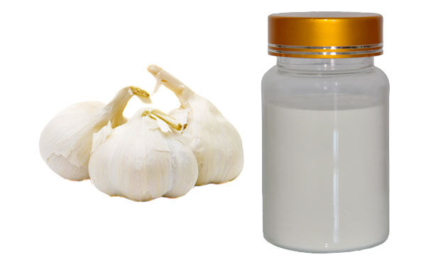 garlic-extract