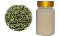 gynostemma-extract