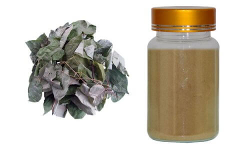 horny-goat-weed-extract
