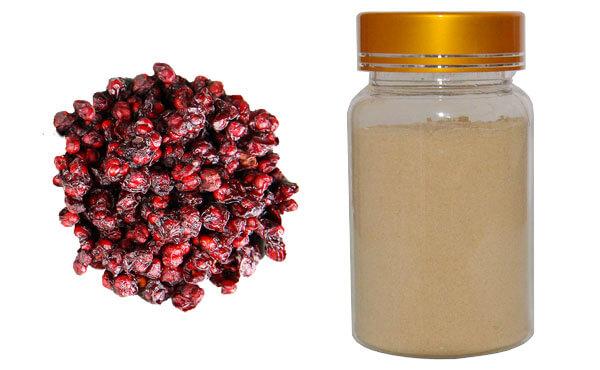 schisandra-chinensis-extract
