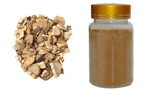 siberian-ginseng-extract