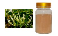 Honeysuckle Flower Extract Chlorogenic Acids