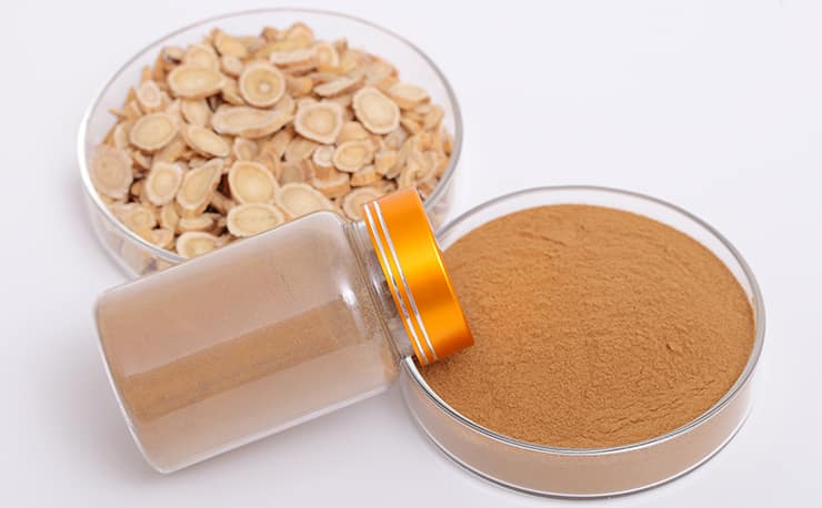 Astragalus-Extract
