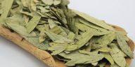 senna-leaf-extract