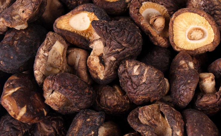 Shiitake-Mushroom-Extract